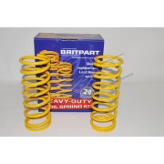 Coil Springs +40mm & +20-50KG Load