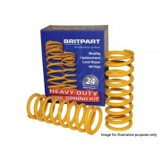 Rear Coil Springs Medium Load +40mm lift