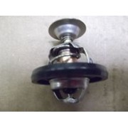 Thermostat 300Tdi (78 Degree)